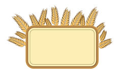 Wheat frame, design element. Vector.  illustration. Royalty Free Stock Photo