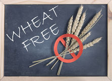 Wheat free Stock Photography