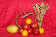 Wheat and Fruits Royalty Free Stock Photography