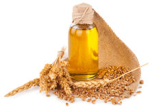 Wheat germ oil. On white background Stock Photography