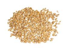 Wheat grain Stock Photo