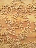 Wheat grain background Royalty Free Stock Images