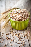 Wheat grain in bowl and ears Royalty Free Stock Images