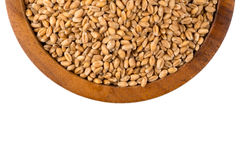 Wheat grain in bowl Royalty Free Stock Image