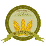 Wheat Grain. Stock Images