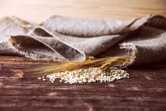 Wheat grain,flour and bread. Royalty Free Stock Images