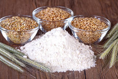 Wheat grain and flour Stock Images