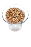 Wheat grain isolated Stock Photos