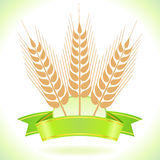 Wheat Grain  Label Stock Photography
