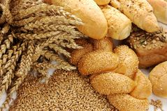 Wheat, grain and various buns and rolls Stock Photos