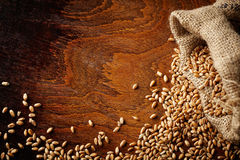 Wheat grain Royalty Free Stock Photography