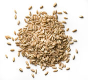 Wheat grains Stock Photo