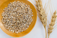 Wheat Grains And Ear Royalty Free Stock Photo