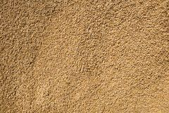 Wheat grains as agricultural background. Stock Photo