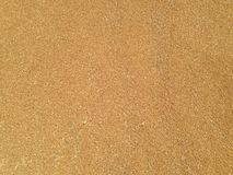 Wheat. Grains background/texture seen from above royalty free stock photography
