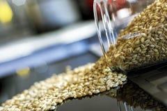 Wheat Grains on Black Stock Photos