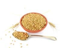 Wheat Grains. In a bowl Stock Photos