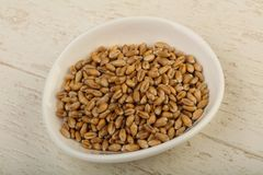 Wheat grains. In the bowl over wooden background Stock Image