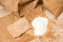 Wheat grains, bran and flour. Royalty Free Stock Photography