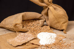 Wheat grains, bran and flour. Stock Photography
