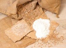 Wheat grains, bran and flour. Royalty Free Stock Photos