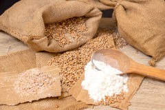 Wheat grains, bran and flour. Royalty Free Stock Images
