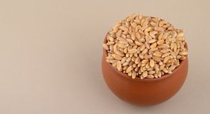 Wheat grains in clay pot. Close up of Wheat grains in clay pot Stock Photo