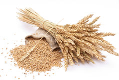 Wheat grains and ears Royalty Free Stock Images