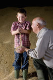 Wheat grains falling from hands of farmer and grandson Royalty Free Stock Images