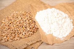 Wheat grains  and flour Stock Photos