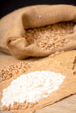 Wheat grains  and flour Stock Photo