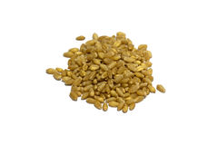 Wheat grains. Wheat grains Royalty Free Stock Image