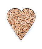 Wheat Grains in heart shapes (on white) Royalty Free Stock Images