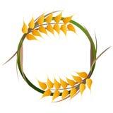 Wheat grains logo Royalty Free Stock Photo