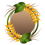 Wheat grains logo Stock Images