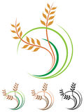 Wheat grains logo Stock Photography
