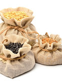 Wheat grains, oat grains and sunflower seeds in the cloth sacks Stock Image