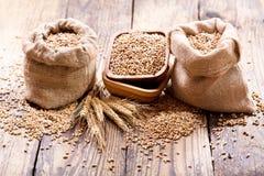 Wheat grains in sacks Stock Image