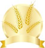 Wheat grains. A vector drawing represents wheat grains design stock illustration
