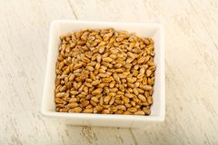 Wheat grains. In the bowl over wooden background Stock Images