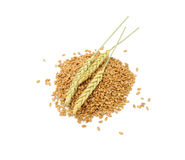 Wheat Grains With Ears Royalty Free Stock Images