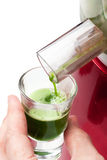 Wheat grass juice. Squeezing wheat grass juice with slow / silent juicer Stock Images