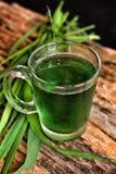 Wheat grass juice Royalty Free Stock Photo