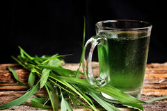 Wheat grass juice Stock Image