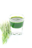 Wheat grass juice Stock Images