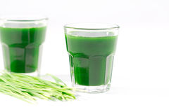 Wheat grass juice on white background Royalty Free Stock Image