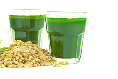 Wheat grass juice on white background Stock Photos