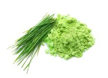 Wheat grass powder and sprouts, isolated. On white royalty free stock photos