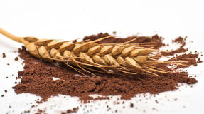 Wheat and ground coffee Stock Image
