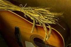 Wheat and guitar. Golden wheat spikes laying on the guitar Stock Images